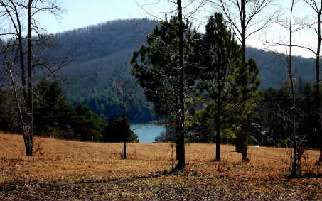 LOT22 Autumn Hills, Blairsville, GA 30512 (MLS #226374) :: RE/MAX Town & Country