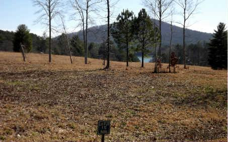 LOT28 Autumn Hills, Blairsville, GA 30512 (MLS #226380) :: RE/MAX Town & Country