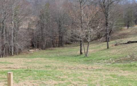 LT 56 The Preserves, Young Harris, GA 30582 (MLS #227725) :: RE/MAX Town & Country