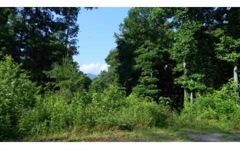 LOT 9 Rustic Ridge, Young Harris, GA 30582 (MLS #230149) :: RE/MAX Town & Country