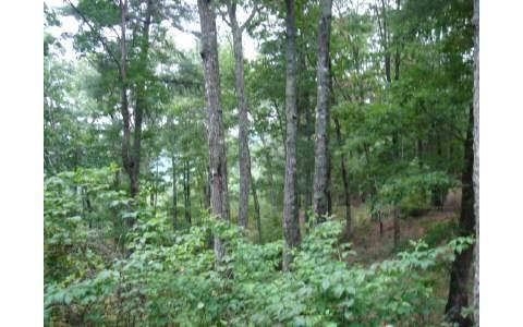 #11-A Prospectors Cove Rd, Blairsville, GA 30512 (MLS #231857) :: RE/MAX Town & Country