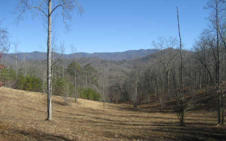 L 111 Shiloh Stables, Hayesville, NC 28904 (MLS #234396) :: RE/MAX Town & Country
