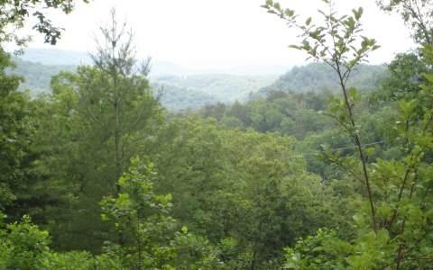 Deer Valley - Photo 1