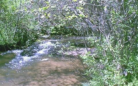 Fern Hollow Lane, Murphy, NC 28906 (MLS #240791) :: RE/MAX Town & Country