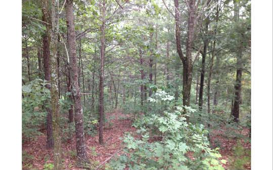 LOT20 Mason Way, Brasstown, NC 28902 (MLS #241317) :: RE/MAX Town & Country