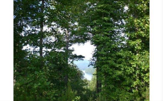 LOT25 Appalachia Hills, Murphy, NC 28906 (MLS #241332) :: RE/MAX Town & Country