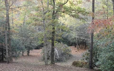 LT 3 Jess Hooper Drive, Hayesville, NC 28904 (MLS #242927) :: RE/MAX Town & Country