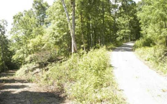 LT 29 Tahlequah Ridge, Hayesville, NC 28904 (MLS #243183) :: RE/MAX Town & Country