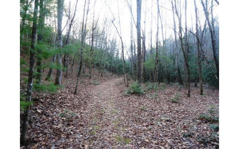 LT 23 Shelton Springs, Hayesville, NC 28904 (MLS #244713) :: Path & Post Real Estate