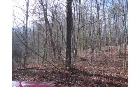 LOT5 Tomahawk Trail, Epworth, GA 30541 (MLS #244717) :: RE/MAX Town & Country