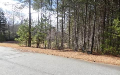 LT 93 The Sanctuary, Blairsville, GA 30512 (MLS #244962) :: RE/MAX Town & Country