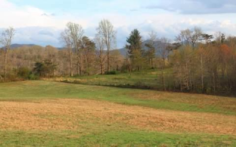 LT 5 The Preserves, Young Harris, GA 30852 (MLS #246783) :: RE/MAX Town & Country