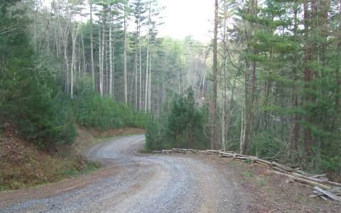 LOT15 Raven Ridge, Mineral Bluff, GA 30559 (MLS #247760) :: RE/MAX Town & Country