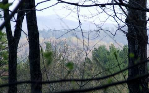 LOT16 Raven Ridge, Mineral Bluff, GA 30559 (MLS #247761) :: RE/MAX Town & Country