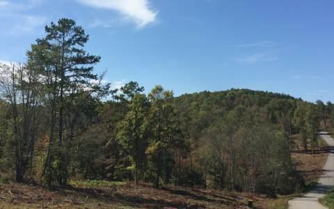 LT 22 Brookwood Hills, Blairsville, GA 30512 (MLS #252454) :: RE/MAX Town & Country