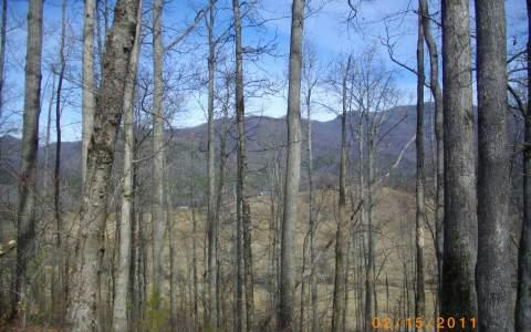 104 Shiloh Stables, Hayesville, NC 28904 (MLS #252879) :: RE/MAX Town & Country