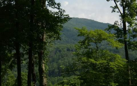 LOT62 Quiet Mountain Trail, Murphy, NC 28906 (MLS #254184) :: RE/MAX Town & Country