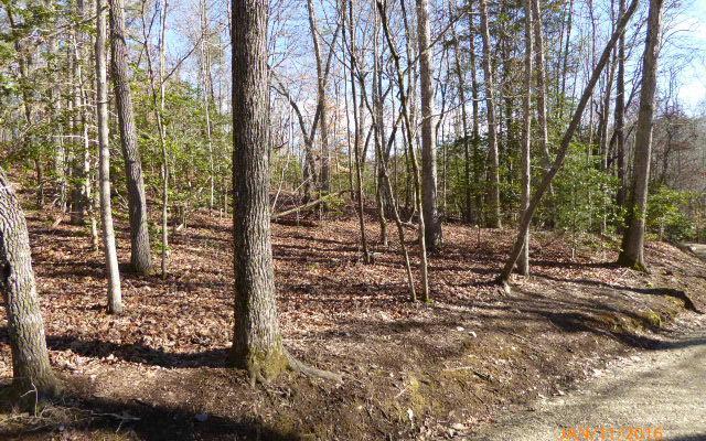 LT32 Ivy Log Estates, Blairsville, GA 30512 (MLS #254255) :: RE/MAX Town & Country