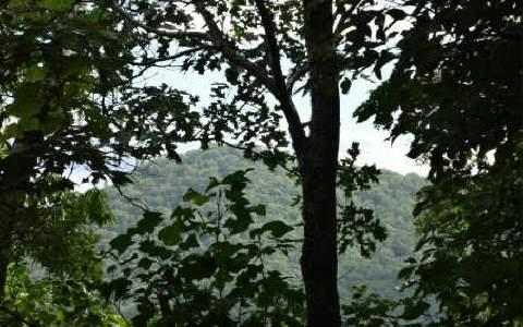 LOT 6 Laurel Mountain, Brasstown, NC 28902 (MLS #255510) :: RE/MAX Town & Country