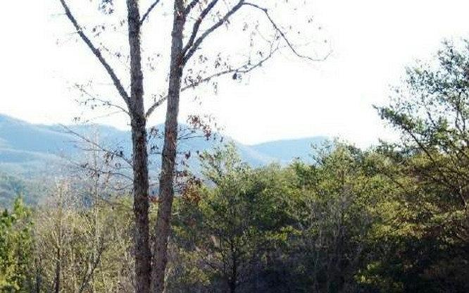 LOT 6 Willow Ridge - Photo 1