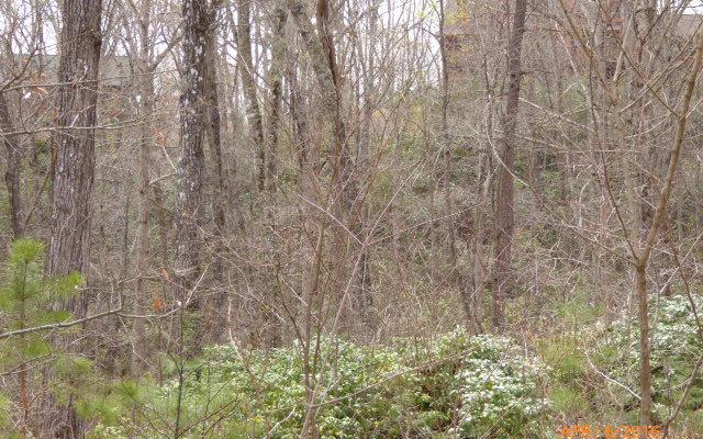 Blairsville, GA 30560 :: RE/MAX Town & Country