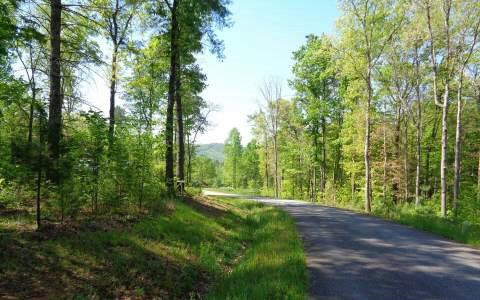 LOT 4 Harbin Woods Drive, Morganton, GA 30560 (MLS #257231) :: RE/MAX Town & Country