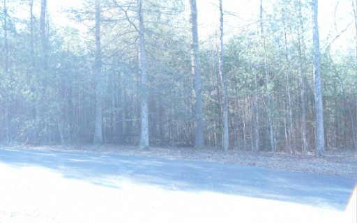 LT114 Hills At Queen Gap, Blairsville, GA 30512 (MLS #257353) :: RE/MAX Town & Country