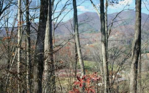 Shiloh Drive Lt 113, Hayesville, NC 28904 (MLS #257679) :: RE/MAX Town & Country