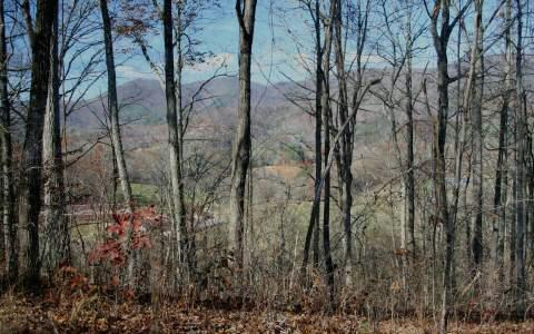 Shiloh Drive Lot 112, Hayesville, NC 28904 (MLS #257680) :: RE/MAX Town & Country