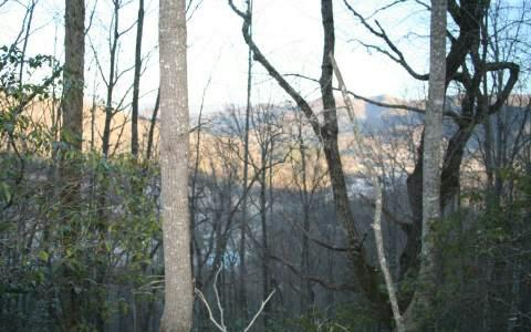Colt Lane Lts 69&72, Hayesville, NC 28904 (MLS #257810) :: RE/MAX Town & Country