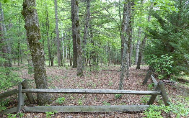 LT82 Souther Forest, Blairsville, GA 30512 (MLS #258272) :: RE/MAX Town & Country
