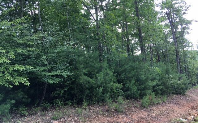 LT 16 Low View, Blairsville, GA 30512 (MLS #260131) :: RE/MAX Town & Country