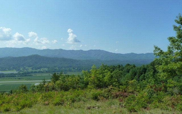 1088 Sky Harbour Trace, Andrews, NC 28901 (MLS #260373) :: RE/MAX Town & Country