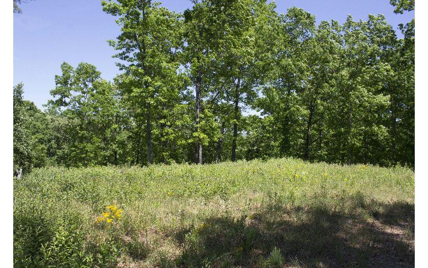 230 Cherokee Circle - Photo 1