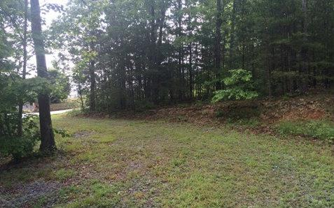267 Twin Peaks, Mineral Bluff, GA 30559 (MLS #261121) :: RE/MAX Town & Country