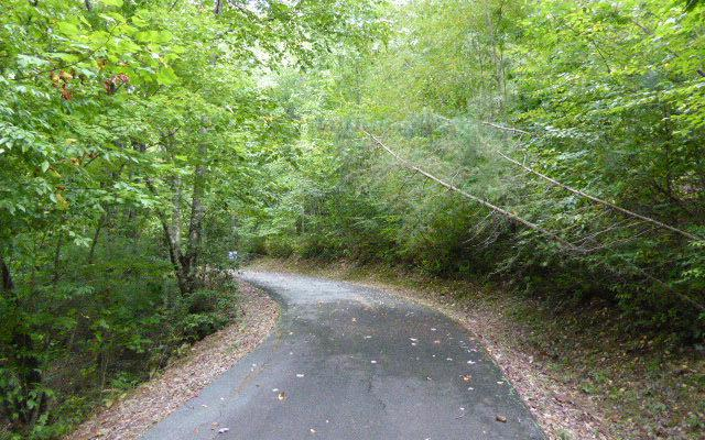 7032 Grizzley Trail, Hiawassee, GA 30546 (MLS #261985) :: RE/MAX Town & Country