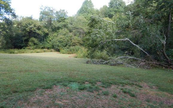 13A Bee Tree, Murphy, NC 28906 (MLS #262041) :: RE/MAX Town & Country