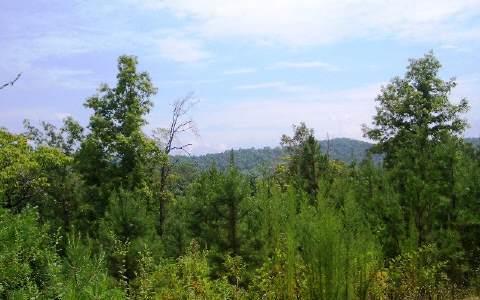 LT 9 Walnut Hills Estates, Mineral Bluff, GA 30559 (MLS #262573) :: RE/MAX Town & Country