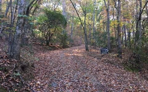 LOT11 Mountainside Drive, Young Harris, GA 30582 (MLS #263030) :: RE/MAX Town & Country