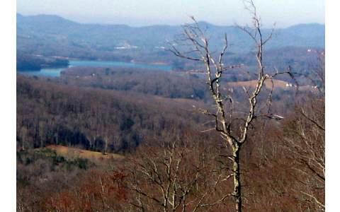 LT137 Shiloh Ridge, Hayesville, NC 28904 (MLS #264885) :: RE/MAX Town & Country