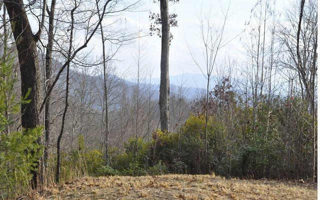Alto Vista Road, Murphy, NC 28906 (MLS #265081) :: RE/MAX Town & Country