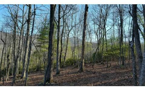 LOTS 5 & 6 COOSA FOREST, Blairsville, GA 30512 (MLS #266103) :: RE/MAX Town & Country