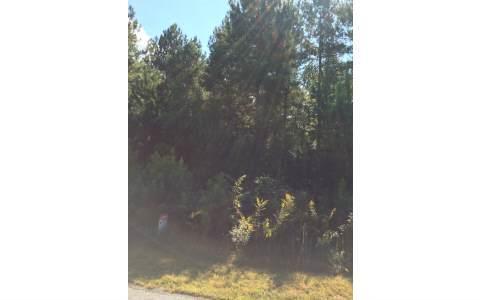 LOT56 Loftis Mountian, Blairsville, GA 30512 (MLS #266623) :: RE/MAX Town & Country