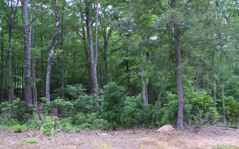 LT 11 Hemlock Ridge Subd, Blairsville, GA 30512 (MLS #266739) :: RE/MAX Town & Country