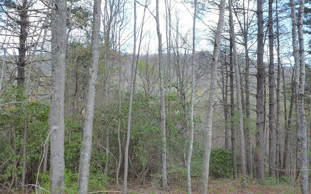 4 & 5 Golden Mountain, Murphy, NC 28906 (MLS #267090) :: RE/MAX Town & Country