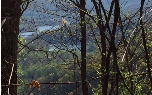 LOT30 Hidden Summit, Hiawassee, GA 30546 (MLS #267181) :: RE/MAX Town & Country