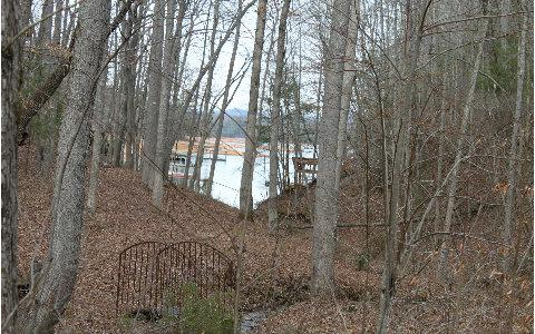 31/36 Arrowood Court, Blairsville, GA 30512 (MLS #267772) :: RE/MAX Town & Country