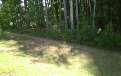 LT 96 Creek Hollow Lane, Blairsville, GA 30512 (MLS #267990) :: RE/MAX Town & Country