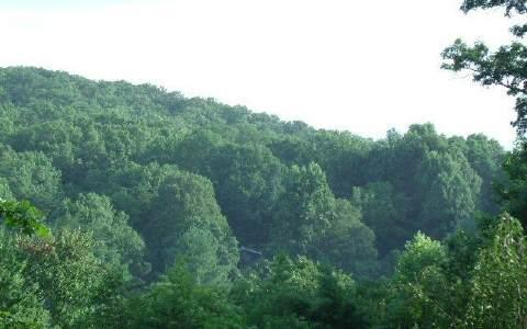 LT 3 Coosa View, Blairsville, GA 30512 (MLS #268337) :: RE/MAX Town & Country