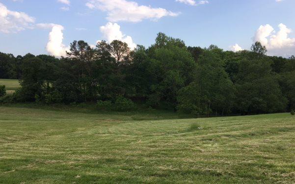 LT 22 Mason Farm Road, Blairsville, GA 30512 (MLS #268428) :: RE/MAX Town & Country